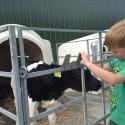 Bauernhofbesichtigung Tossens 7 125x125 - Familien-Urlaubs-Tipp: Center Parcs Nordseeküste
