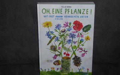 """Buch Oh eine Pflanze von Felix Bork 12 400x250 - Rezension: Buch """"Oh, eine Pflanze!"""" von Felix Bork"""