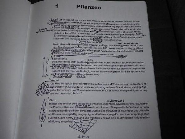 """Buch Oh eine Pflanze von Felix Bork 9 600x450 - Rezension: Buch """"Oh, eine Pflanze!"""" von Felix Bork"""