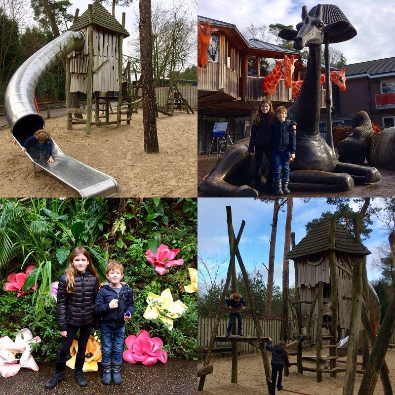 Burgers Zoo Erfahrungsbericht 4 - Ausflugstipp: Burgers Zoo in Arnheim
