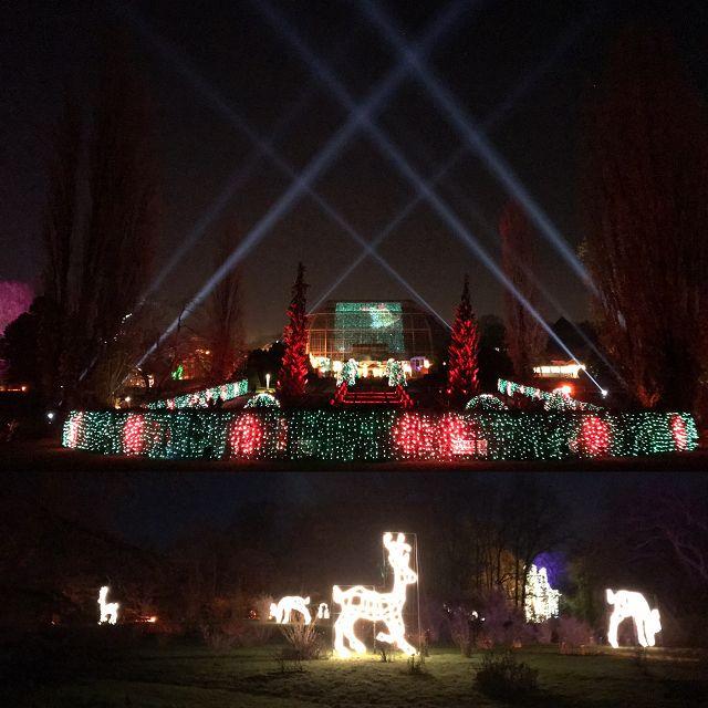 Ausflugstipp: Christmas Garden Berlin