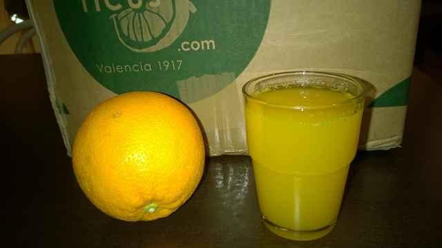 CitrusRicus 3 - Tester gesucht: CitrusRicus – Orangen aus Valencia