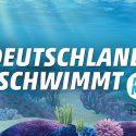 Deutschland schwimmt (3)