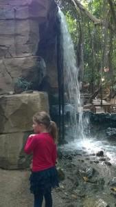 Erfahrungsbericht Center Parcs Het Heijderbos 36 169x300 - Familienurlaub im Center Parcs Het Heijderbos