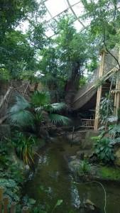 Erfahrungsbericht Center Parcs Het Heijderbos 39 169x300 - Familienurlaub im Center Parcs Het Heijderbos