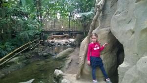 Erfahrungsbericht Center Parcs Het Heijderbos 40 300x169 - Familienurlaub im Center Parcs Het Heijderbos
