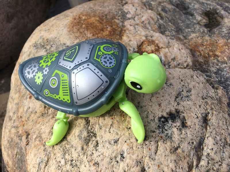 Produkttest: Little Live Pets Schildkröte von Boti