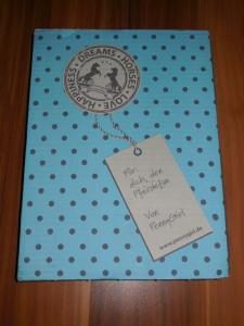 Penny Girl Wilkommens Paket (1)
