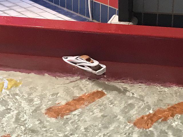 RC Sea Cruiser, RTR im Test