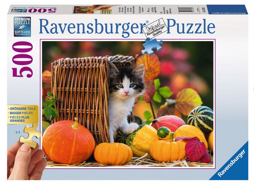 Ravensburger Best Ager Puzzle (4)