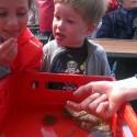 Schiffahrt Hörnum 3 125x125 - Ausflugsmöglichkeiten auf Sylt mit Kindern