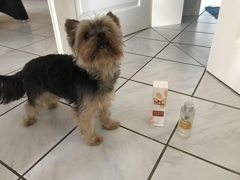 TheFurbulous Silk Coat – Kokospflege für schönes Hundefell