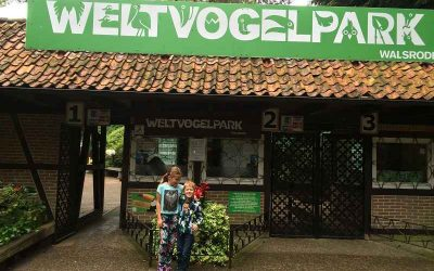 Weltvogelpark Walsrode 1 400x250 - Familienausflug in den Weltvogelpark Walsrode