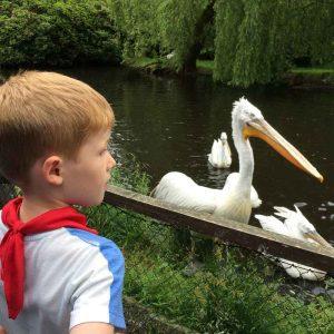 Weltvogelpark Walsrode (14)