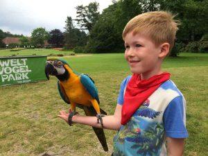 Weltvogelpark Walsrode (18)
