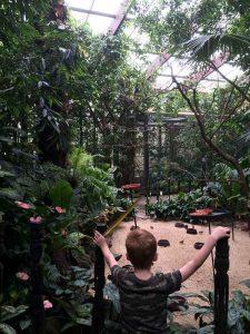 Weltvogelpark Walsrode (3)