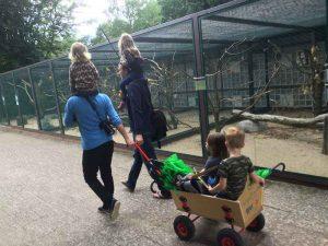 Weltvogelpark Walsrode (8)