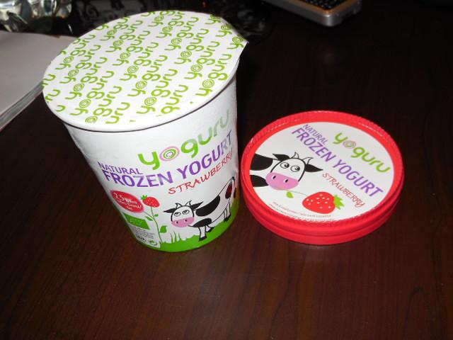 Yoguru Natural Frozen Yogurt im Test (2)
