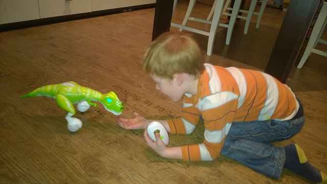 Zoomer Dino Test (1)