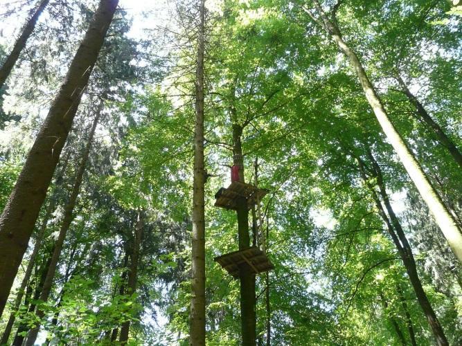 Tipps für den Ausflug in den Bayerischen Wald