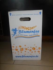 blumenfee (1)