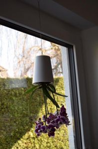 boskke Blumentopf 197x300 - Produkttest: boskke Sky Planter von Greenbop