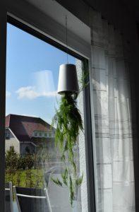 boskke Blumentopf 2 197x300 - Produkttest: boskke Sky Planter von Greenbop