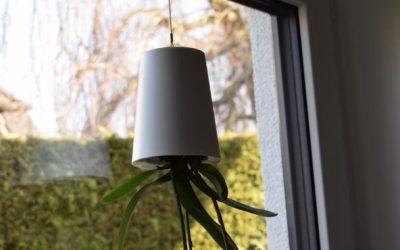boskke Blumentopf 400x250 - Produkttest: boskke Sky Planter von Greenbop