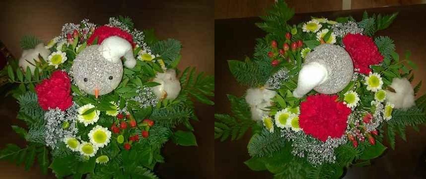 Advents-Gewinnspiel: FloraPrima