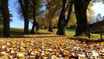 Kindermode für den Herbst – interessante Tipps für Eltern und Kinder