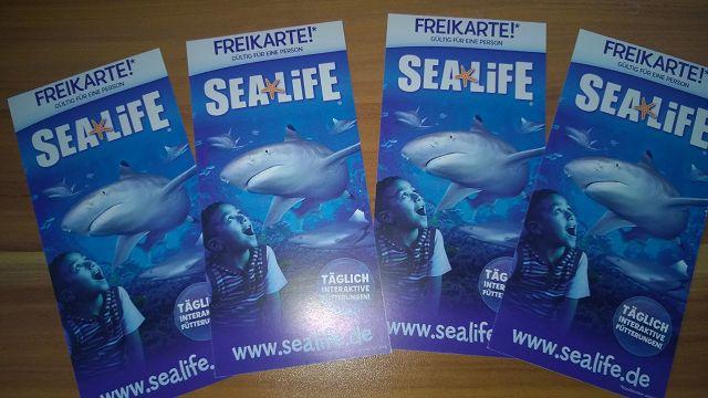 k WP 20150723 16 43 25 Pro - Gewinnspiel - Sea Life Junge Umweltschützer