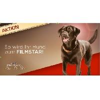 pro plan duo delice - Gaumenglück für Hunde – sponsored Video
