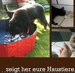 zeigt her eure Haustiere 3